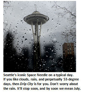 Rain, clouds, moss and other reasons I love Drip City