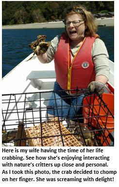 crabbing - Michele