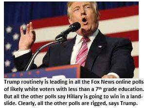 rigged-election-trump